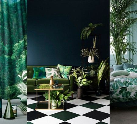 b5838b953091257d2a61f531b51517d1-la-jungle-foyer-copie